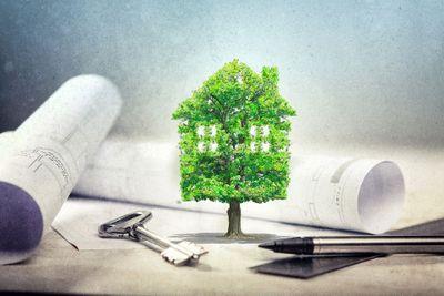 Ökologisch nachhaltig